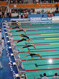 Freestyle swimming: Facts, Discussion Forum, and Encyclopedia Article