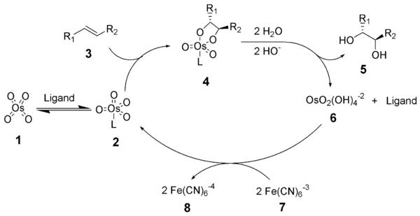 [Immagine: sharpless_dihydroxylation_mechanism.png]